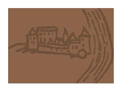 Občianske združenie Vodný hrad